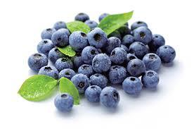 Quality Tested 25% Anthocyanidins Bilberry Extract