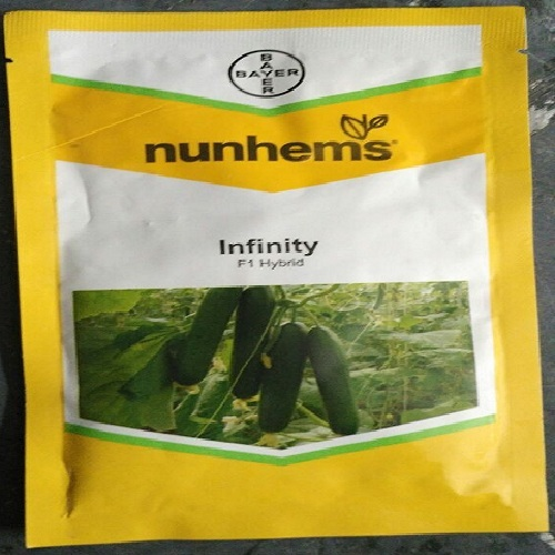 Nunhems Infinity F1 Cucumber Seeds in  Varachha
