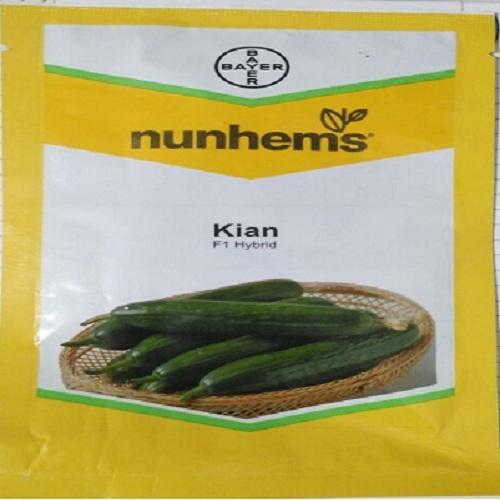 Nunhems Kian F1 Cucumber Seeds