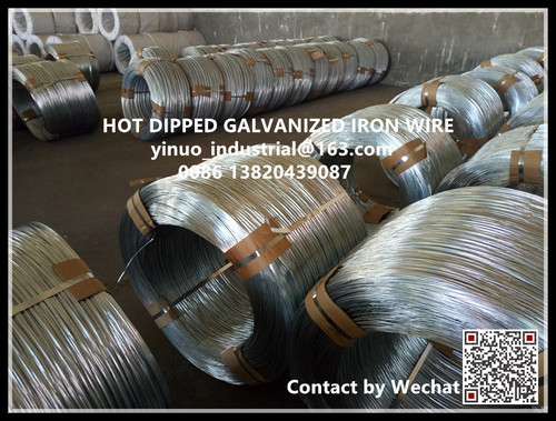 Electro Galvanized Wires (BWG22) in   Xiqing District