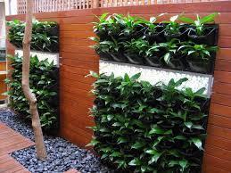 Horizontal Gardening Services