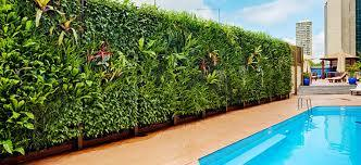 Vertical Gardening Services in  Kondapur