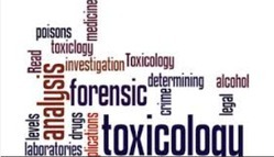 Toxicological Testing Laboratory Services
