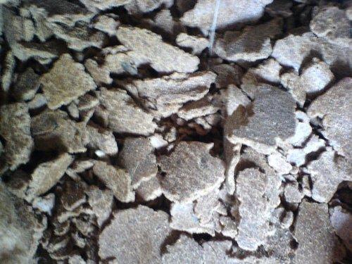 Coconut Oil Cake in  Palladam