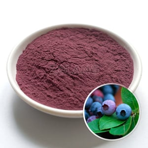 Pure Blueberry Milled Powder