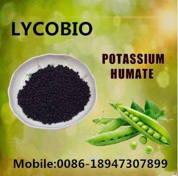 Humic Acid Potassium Humate Base Fertilizer