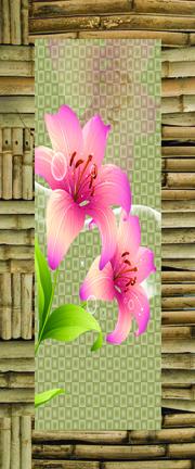 Laminated Wooden Door Paper Print