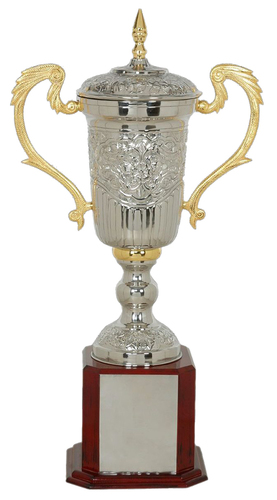 Alumunium Award Trophies