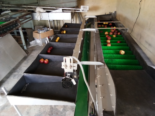 Apple Grading Packaging Machines
