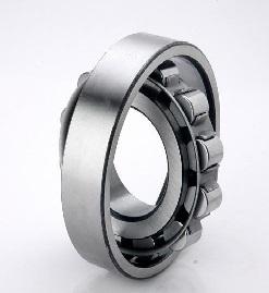 200 Series Cylindrical Bearing