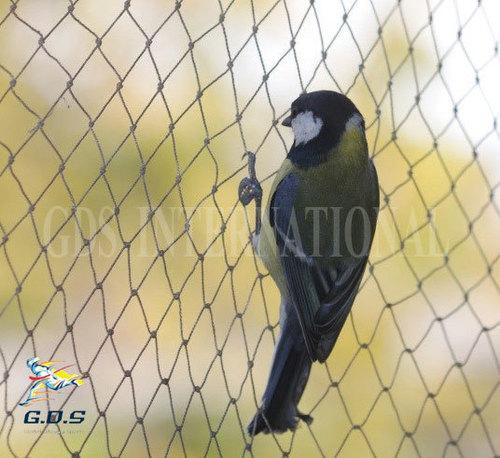 Rigid Anti Bird Nets in  Transport Nagar
