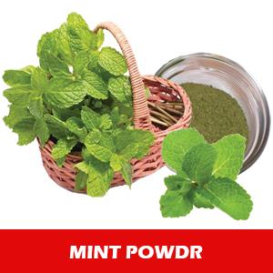 Herbal Mint Powder