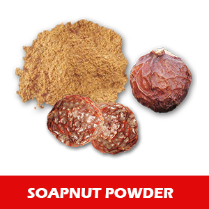 Top Quality Soapnut Powder