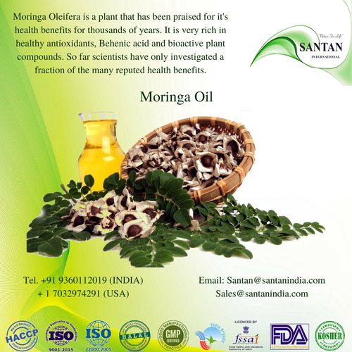 Herbal Moringa Oleifera Seeds Oil