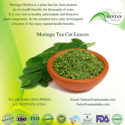 Natural Moringa Dried Tea Cut Leaves