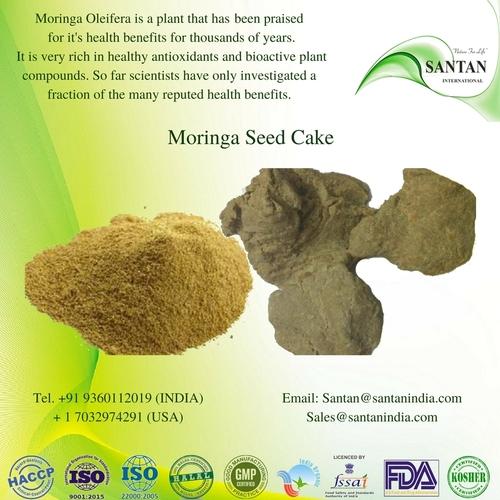 Moringa Seed Cake