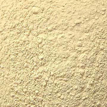 Fine Quality Dehydrated Garlic Powder