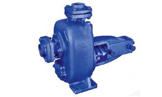 STP Plant Pump