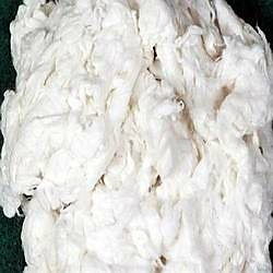 High Quality Cotton Comber Noil