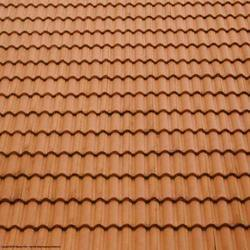 Roofing Tiles in  Fort