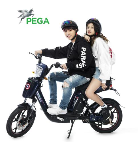 CA2 PEGA Electric Bike