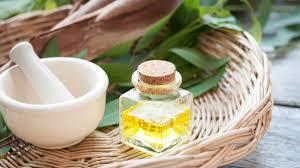 Pure Eucalyptus Oil