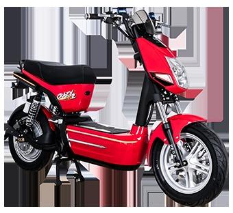Electric Bike (1200W Motor)
