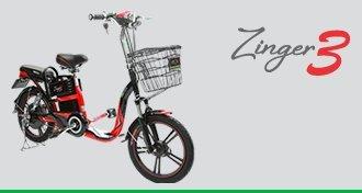 Electric Bike BOSCH Motor ECU Charger