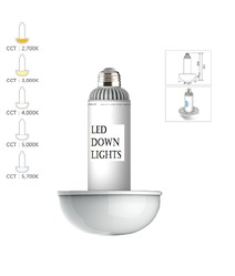 High Quality LED Down Light