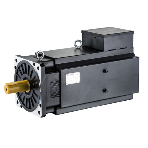 Servo Motor For Injection Molding Machinery in  New Area