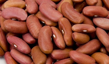 Red Kidney Beans (Rajma) in  Narela