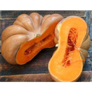 Pumpkin Ripe - Paka Kaddoo
