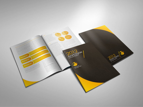 Brochure And Catalog Designing Services