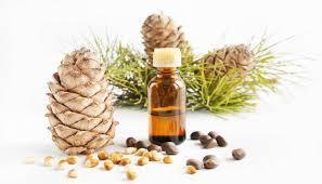 Cedar Wood Perfume Oil