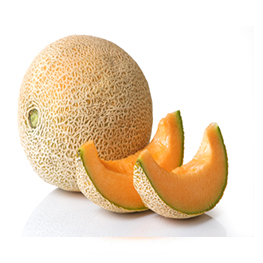 Cantaloupe Melon At Best Price In Delhi Delhi Frugivore Ind Pvt Ltd ⭐ cantaloupe sales and prices in one place. tradeindia