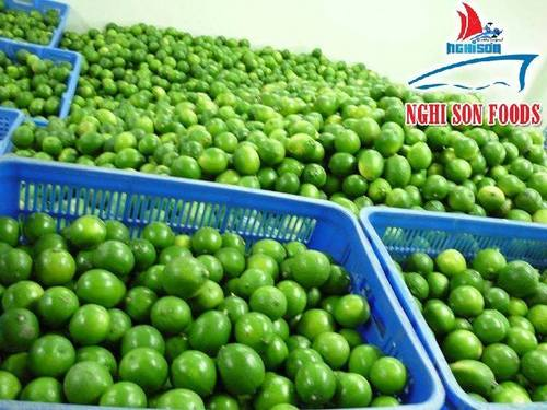 Fresh Seedless Lime Certifications: Healthy
