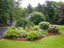 Residential Landscape Design Services