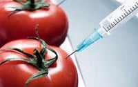 Chemical Food Additive Testing Service