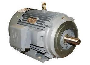 Heavy Duty Electrical Motors