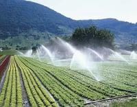 Sprinkler and Drip Irrigation Systems