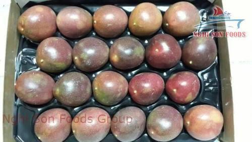 Vietnamese Passion Fruit