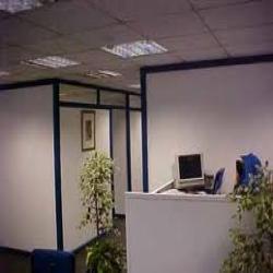 Office Decoration Management Services