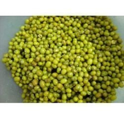 Green Color Mung Beans