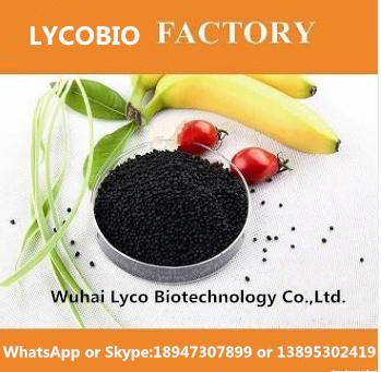 Leonardite Natural Humic Acid Shiny Granules