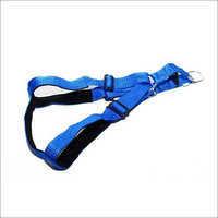 Paddled Body Belt