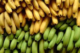 Yellow and Green Banana