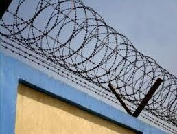 Bis Metal Barbed Wire Fence