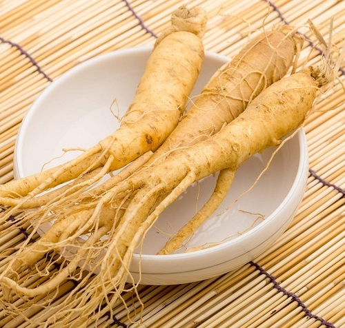 Ginseng Extract in  Rai Industrial
