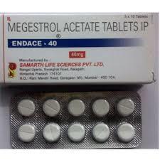 Endace Megestrol Acetate Tablets