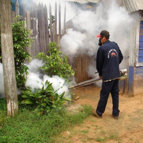 Pest Control Fogging Service